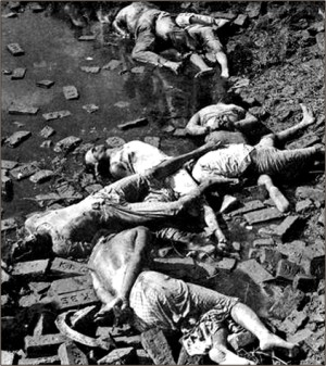 dec17, 1971 rayer bazar dhaka