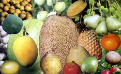 bangla fruits