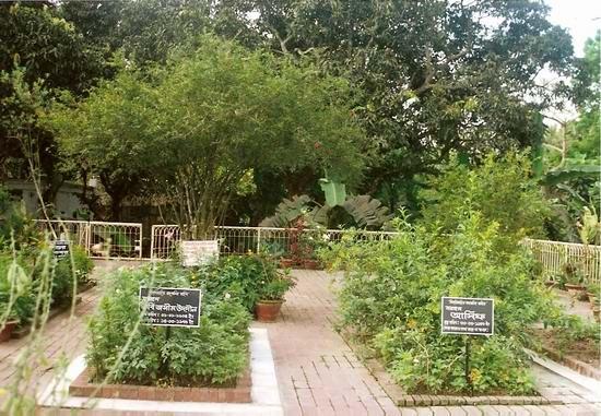 Poets Graveyard
