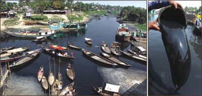 Groundwater Pollution in Bangladesh Paper