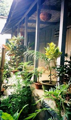jasim's house