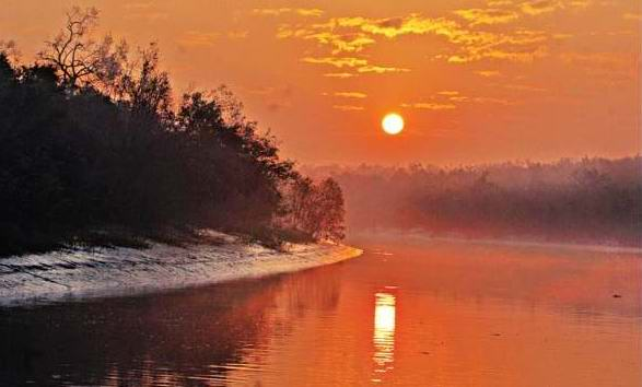 sun set at sunderbans