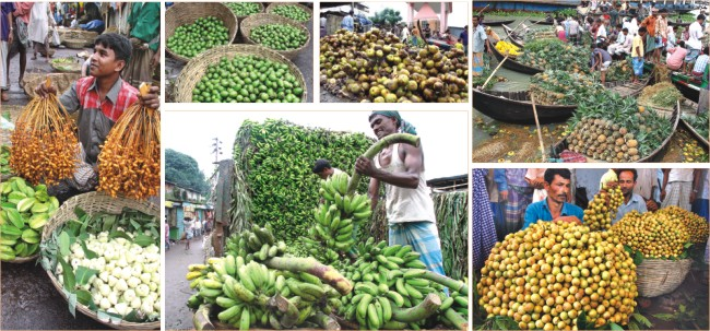 jasim uddin's favourite monsoon fruits